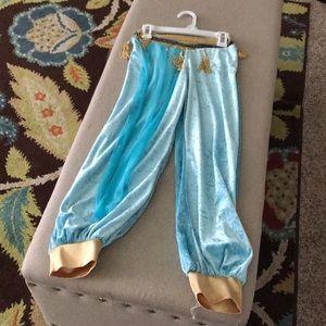 Princess Jasmine pants
